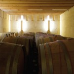 PERRAUDIN ARCHITECTES: Vinaria Nizas, Franta