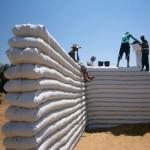 DOSAR: ARCò - scoli pentru comunitati de beduini din Orientul Mijlociu