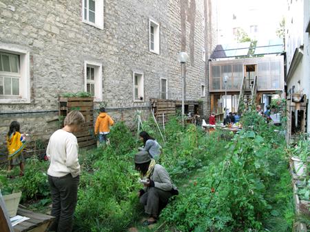 agricultura urbana 9_B_AAA-56-1-Eco-interstice