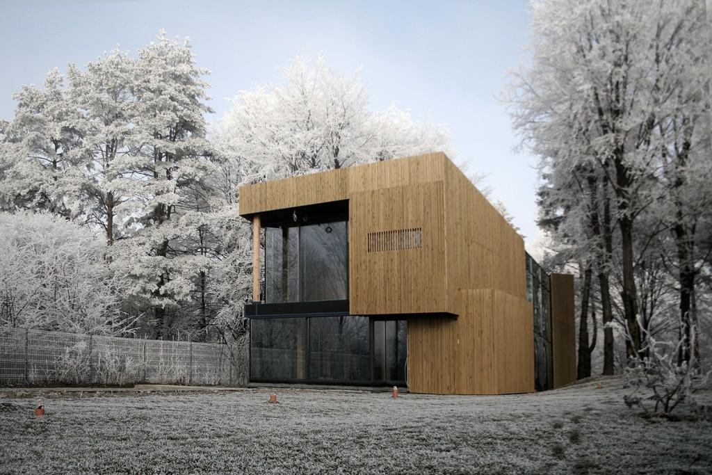 Tecto arhitectura - casa pasiva -Suceava -c01