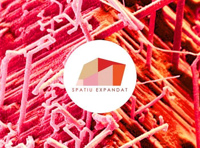 Spatiu expandat 2016