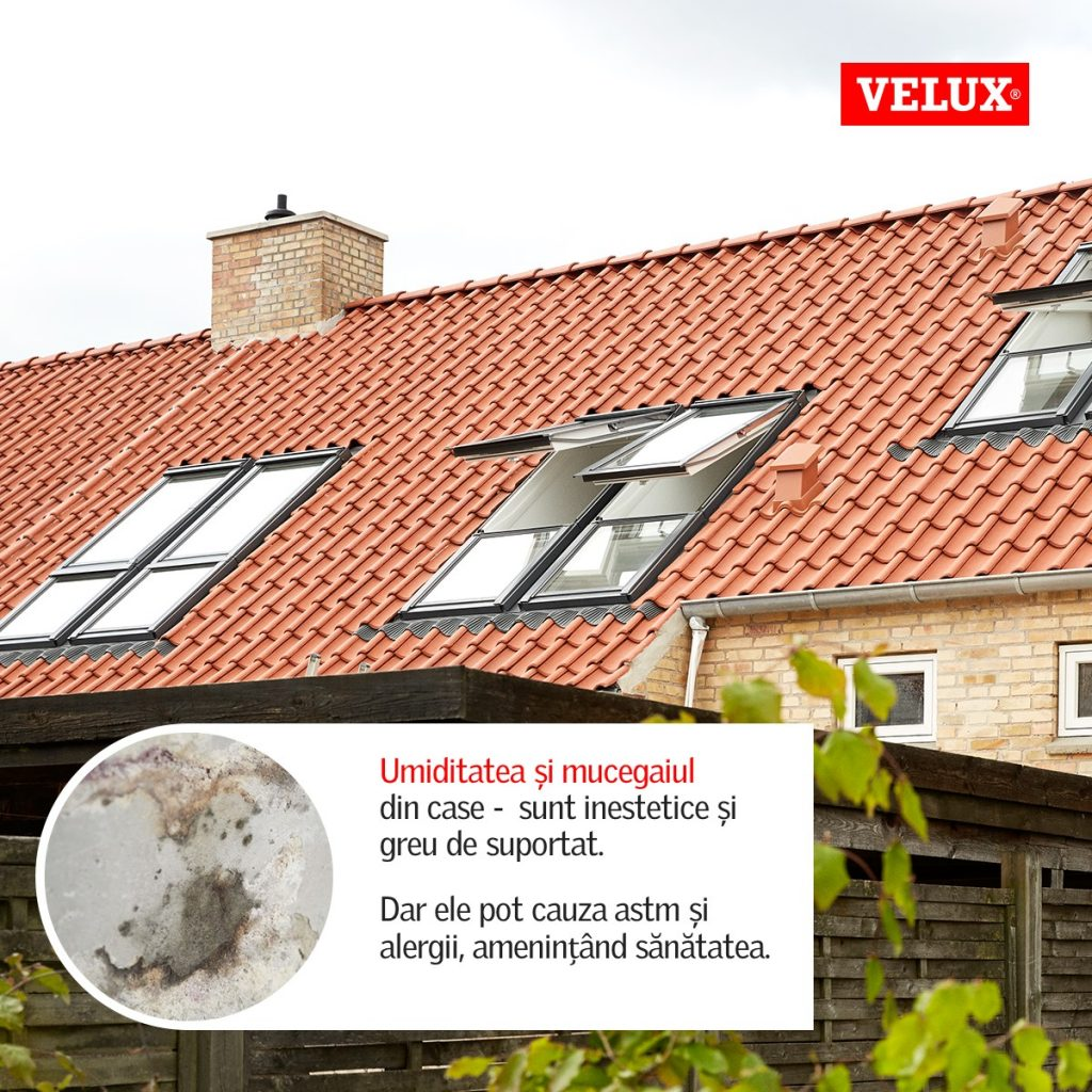 6_velux-fraunhofer-health-dampness-mould_ro