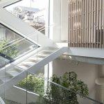 Articolul săptămânii: Cub, hol, copac. Outline Architecture Office: O locuință pe strada Tolstoi, București