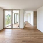 Urbanizarea periferiei elvețiene. Igual Guggenheim Architects: 2 proiecte de locuințe colective